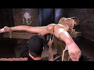 busty bdsm video collection